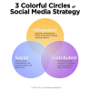 3_colorful_circles_social_strategy_michael_leis